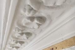 Plaster Cornice Restoration 4