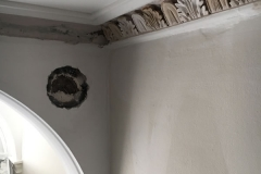 cornice paint removal 9
